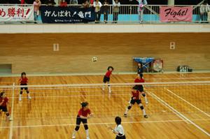 20060507.jpg