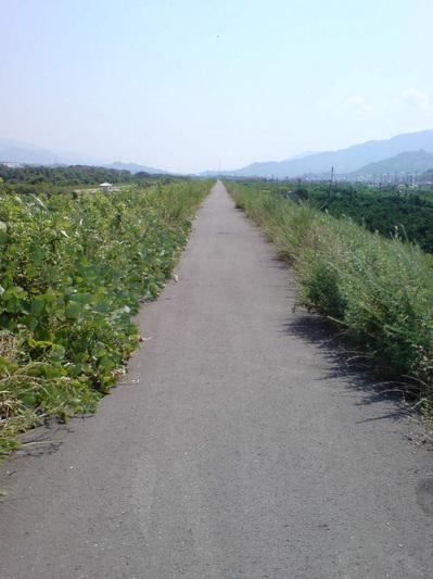 20080721-02.jpg